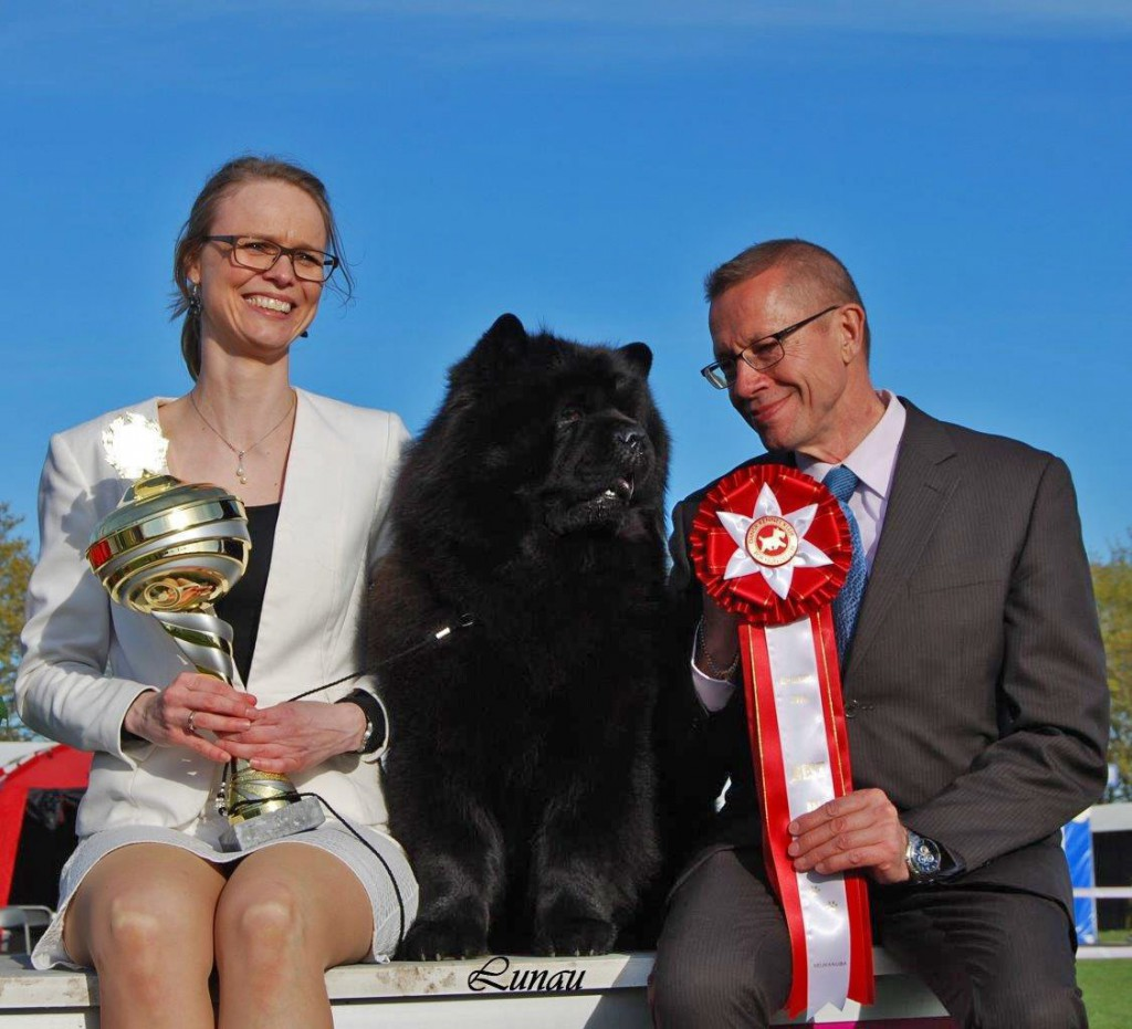 Chow Chow Kennel Hjelme Piuk Chow Possesses Black Passion og Stine Hjelme og Hans Almgren